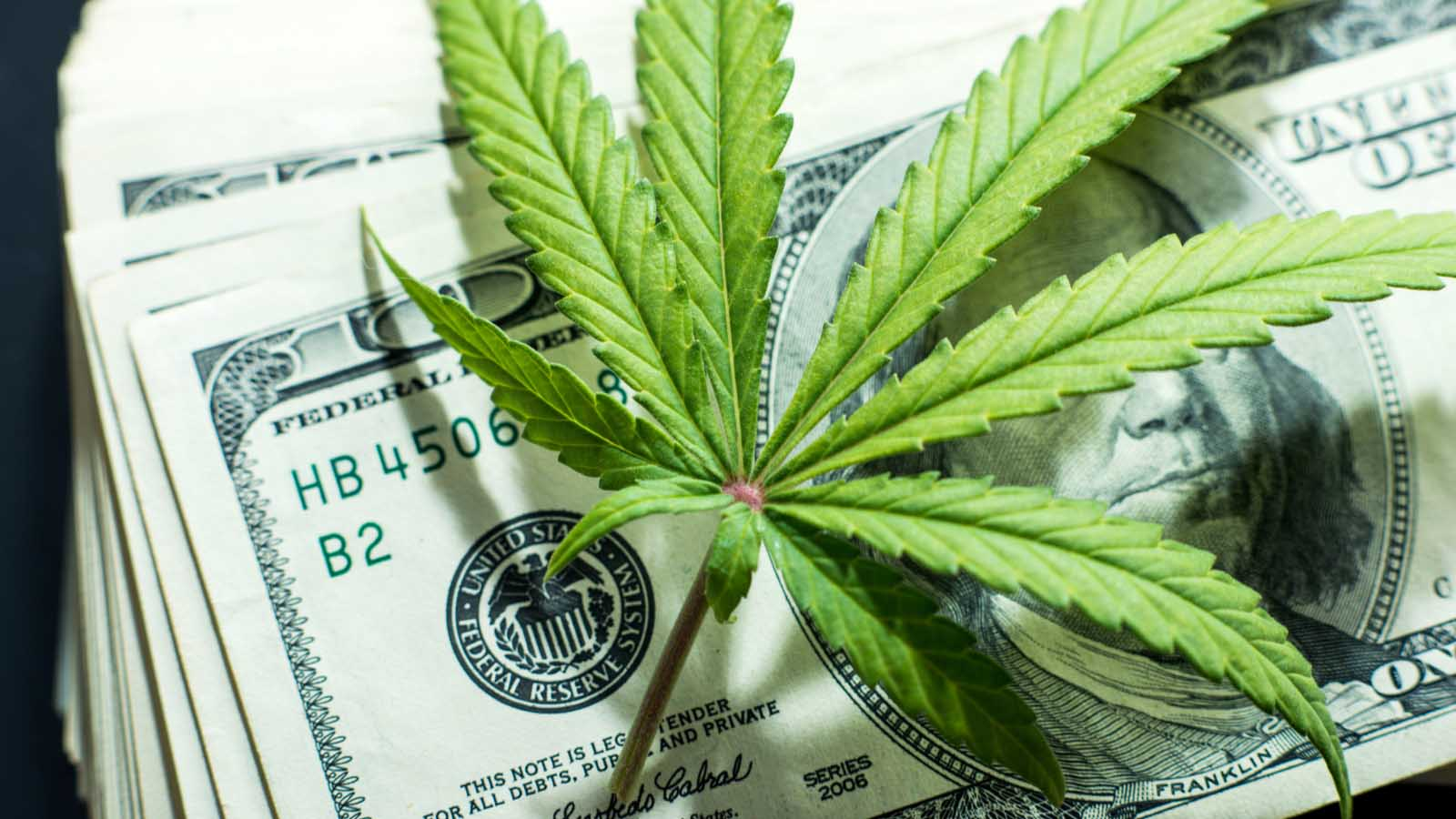 Rise of Marijuana Stocks in North America